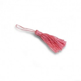 Coccinella Rossa Portafortuna Kit 10pz
